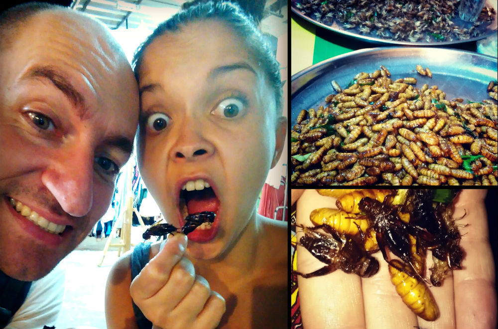 insecpt eat 1000x660