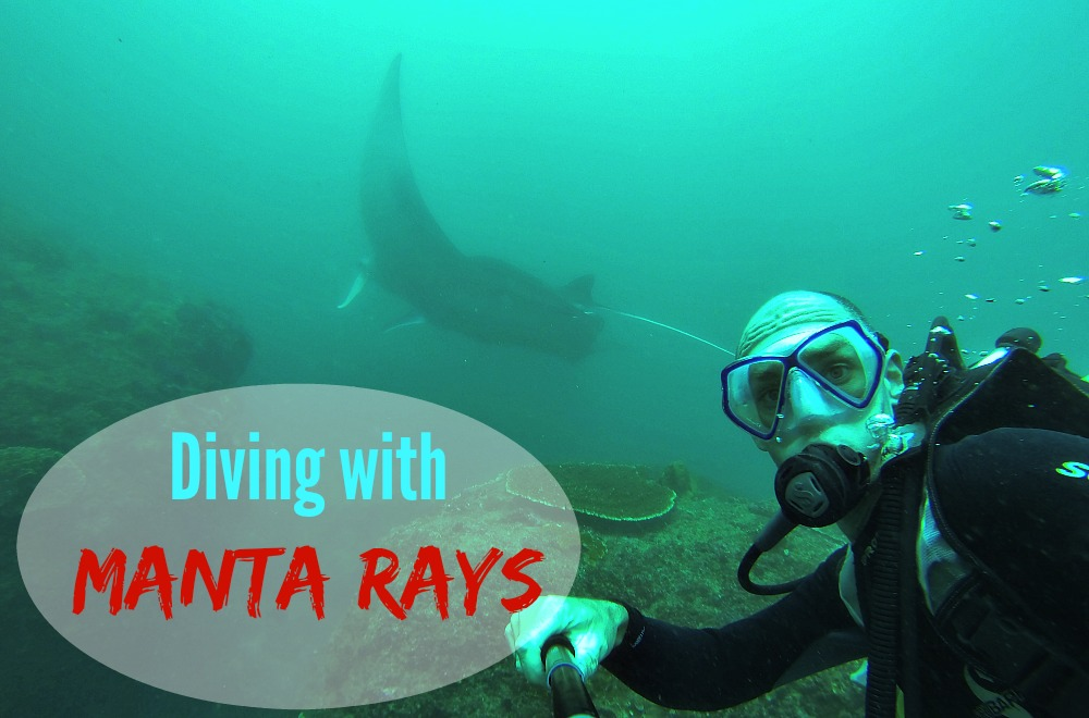 Nusa Lembongan Diving with Manta Rays